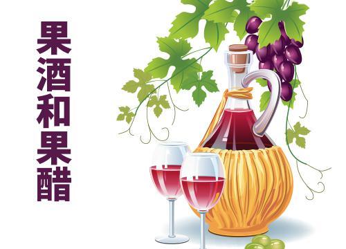 果酒和果醋的制作 生物教师