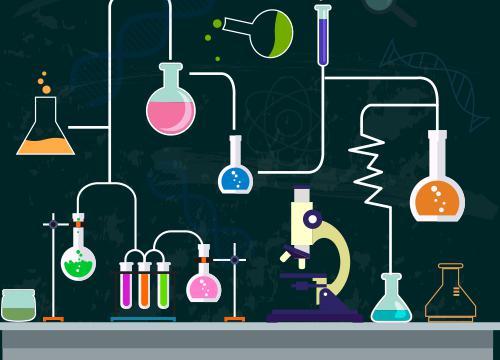 镁与沸水的反应 化学教师